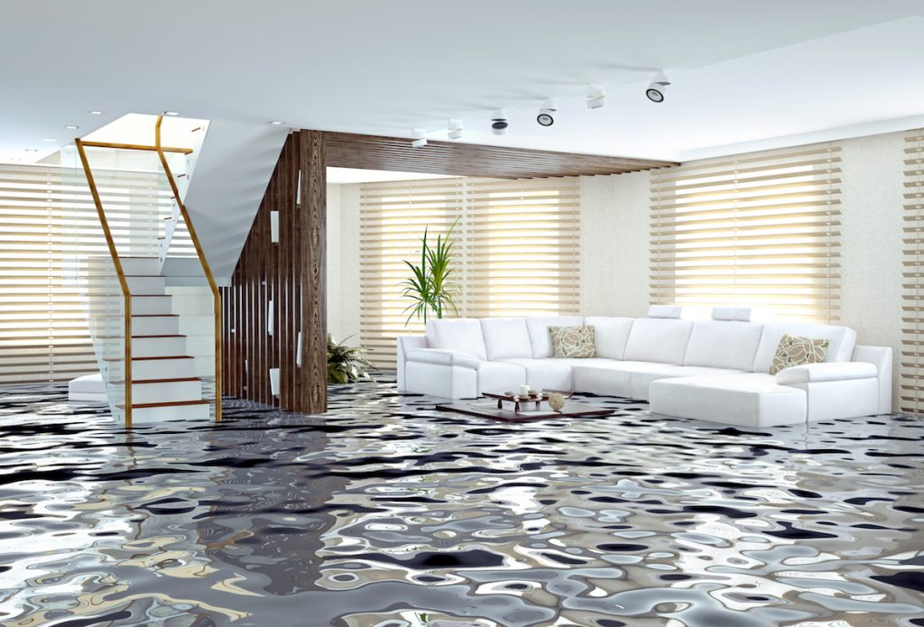 WaterShield Atlantic has earned the reputation of being a leader in basement waterproofing and foundation repair across Atlantic Canada. Call for a free estimate.